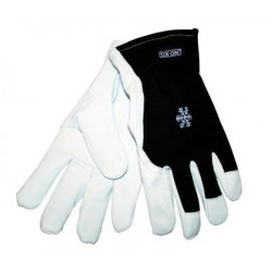 Technic Vinter handske 10